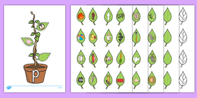 Beanstalk Phonics Resource Pack - EYFS, KS1, phonics, Letters and Sounds, initial sounds, alphabet, letter sounds