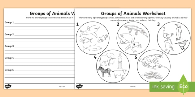 Animal Groups Worksheet - animals, living things, classifying animals, grouping animals, animals worksheet, fish reptiles and mammals, science worksheet
