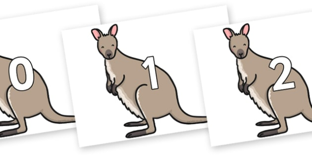 Numbers 0-50 on Wallaby - 0-50, foundation stage numeracy, Number recognition, Number flashcards, counting, number frieze, Display numbers, number posters