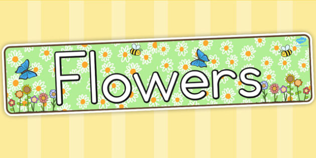 Flower Display Banner - Australia, Flower, Display, Banner, Grow