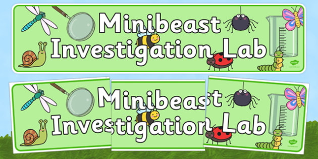 Minibeasts Investigation Lab Role Play Display Banner - Minibeasts, minibeast, investigation, lab, role play, banner, display, knowledge and understanding of the world