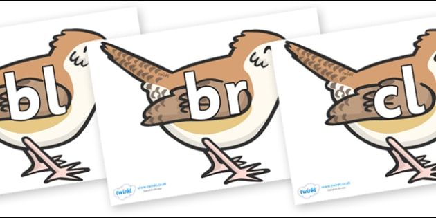 Initial Letter Blends on Wrens - Initial Letters, initial letter, letter blend, letter blends, consonant, consonants, digraph, trigraph, literacy, alphabet, letters, foundation stage literacy