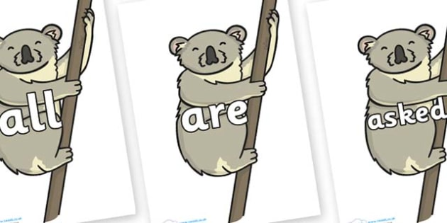 Tricky Words on Koalas - Tricky words, DfES Letters and Sounds, Letters and sounds, display, words
