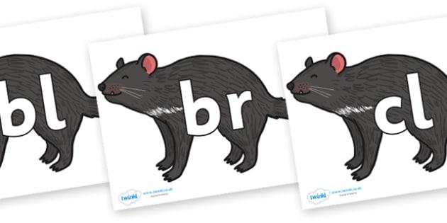 Initial Letter Blends on Tasmanian Devil - Initial Letters, initial letter, letter blend, letter blends, consonant, consonants, digraph, trigraph, literacy, alphabet, letters, foundation stage literacy