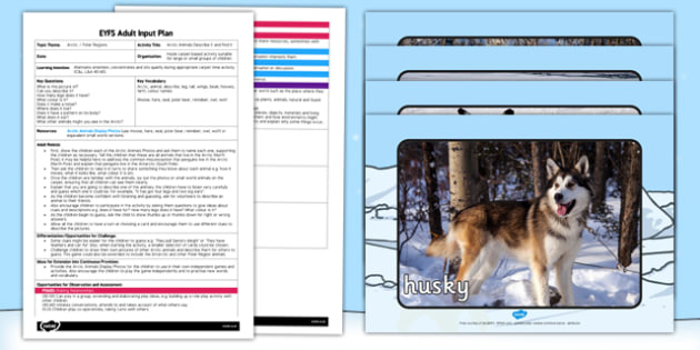 Arctic Animals Describe It and Find It EYFS Adult Input Plan and Resource Pack - arctic, animals, describe, find, eyfs, adult input plan, pack