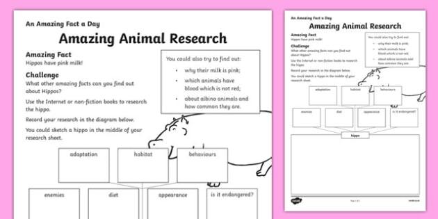 Amazing Animal Research Activity Sheet, worksheet