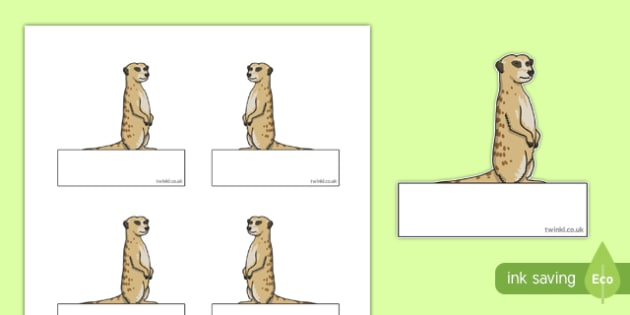 Meerkat Themed Self Registration Labels - meerkat, safari, self registration, labels, display