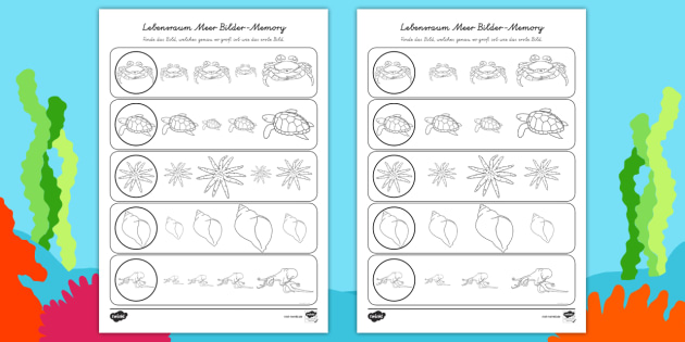 NEW * Lebensraum Meer Bilder-Memory Arbeitsblätter