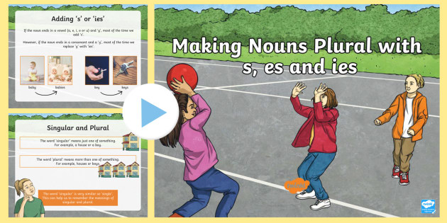 Making Nouns Plural, singular and plural, s, es, ies,