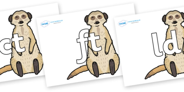 Final Letter Blends on Meerkats - Final Letters, final letter, letter blend, letter blends, consonant, consonants, digraph, trigraph, literacy, alphabet, letters, foundation stage literacy