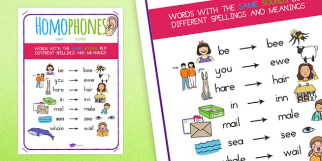 Large Homophone Display Poster - australia, homophone, display