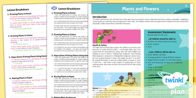 Art: Plants and Flowers UKS2 Planning Overview CfE