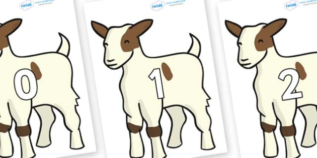 Numbers 0-31 on Baby Goats - 0-31, foundation stage numeracy, Number recognition, Number flashcards, counting, number frieze, Display numbers, number posters