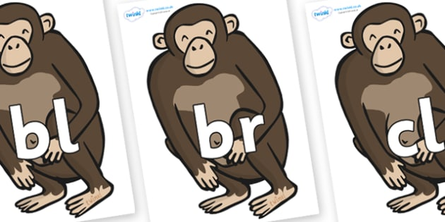Initial Letter Blends on Chimps - Initial Letters, initial letter, letter blend, letter blends, consonant, consonants, digraph, trigraph, literacy, alphabet, letters, foundation stage literacy