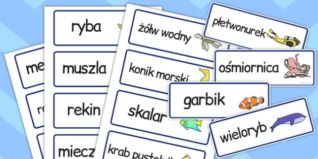 Karty ze slownictwem Swiat podwodny po polsku  - materialy , Polish