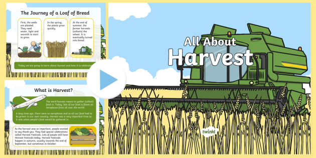 All About Harvest PowerPoint - autumn, farmers, crops