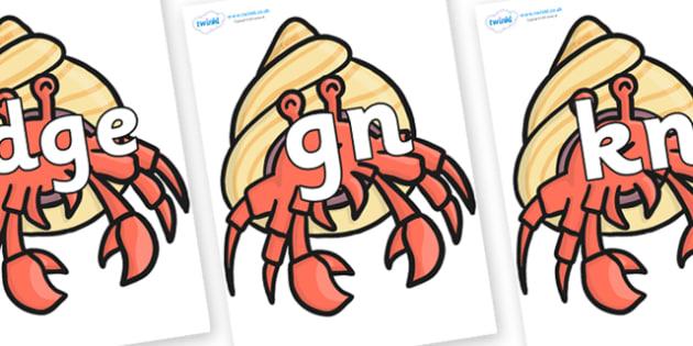 Silent Letters on Hermit Crabs - Silent Letters, silent letter, letter blend, consonant, consonants, digraph, trigraph, A-Z letters, literacy, alphabet, letters, alternative sounds