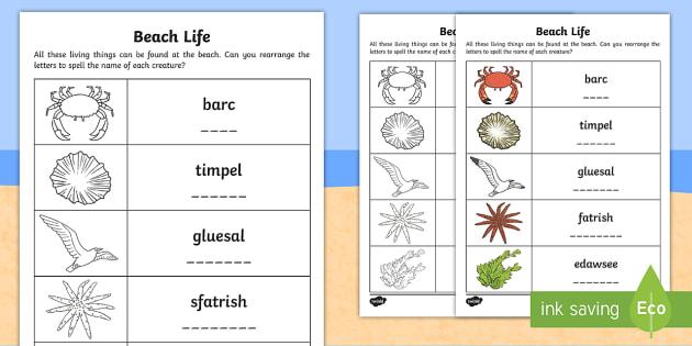 beach life anagrams worksheet activity sheet worksheet. Black Bedroom Furniture Sets. Home Design Ideas