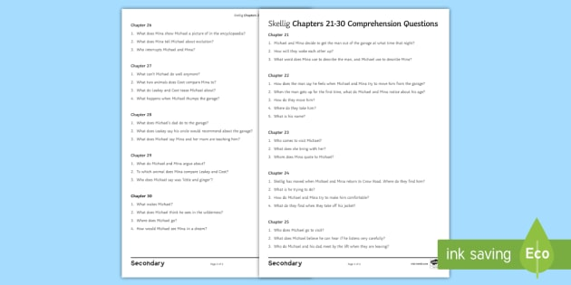 Chapters 21 30 comprehension questions worksheet activity chapters 21 30 comprehension questions worksheet activity sheet to support teaching on skellig by sciox Images