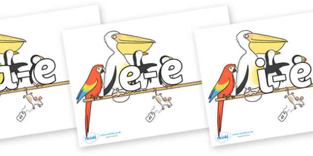 Modifying E Letters on Pets on a Perch to Support Teaching on The Great Pet Sale - Modifying E, letters, modify, Phase 5, Phase five, alternative spellings for phonemes, DfES letters and Sounds