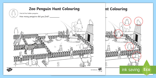 Zoo Penguin Hunt Colouring Sheet - zoo, penguin, hunt, colouring