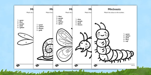 Minibeasts Colour by Number Counting Activity Sheet - colour, number, counting, activity, colour by number, count, minibeast, worksheet