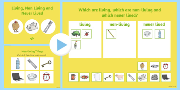 Sorting Living Things Non-Living Things Science Notebook Teaching
