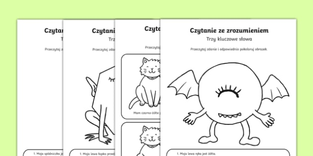 Reading Comprehension Three Key Words Activity Sheets Polish Translation - Reading comprehension, information carrying words, key words, follow instructions, worksheet