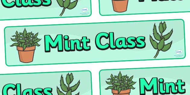 Mint Class Display Banner - mint class, class banner, class display, mint, classroom banner, classroom areas signs, areas, display banner, display