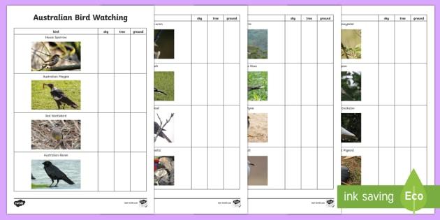 Australian Bird Watching Checklist - bird watching, birds, Australian animals, Australian birds, ornathology,Australia
