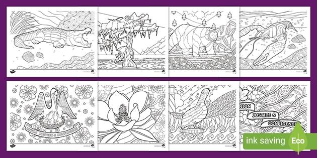 Louisiana State Symbols Mindfulness Coloring Sheets