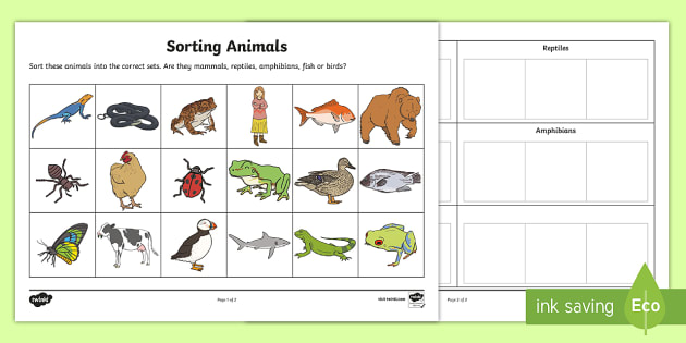 Sorting Animals into Sets Worksheet - worksheet, sorting