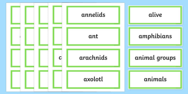 Feathers, Fur or Leaves Word Wall Display Cards - australia, Australian Curriculum, Feathers Fur or Leaves, science, Year 3, word wall, display