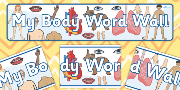 My Body Word Wall Display Banner - banners, posters, poster