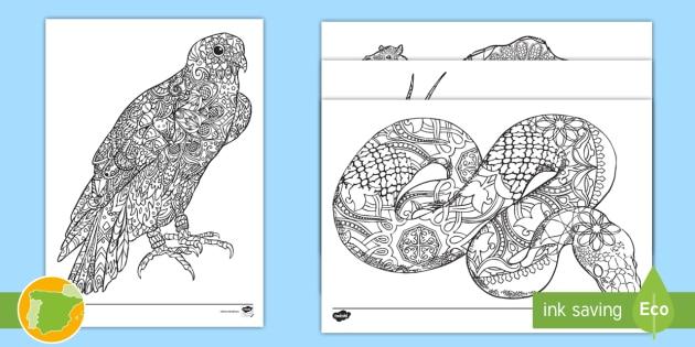 NEW * Hojas de colorear: Animales con motivos arabescos