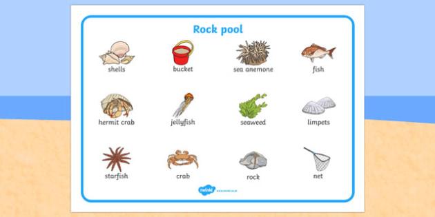 Seaside Rock Pool Word Mat - seaside, beach, seaside word mat, rockpool word mat, rock pool word mat, seaside key words, seaside words, beach words
