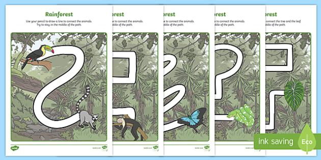 Rainforest Themed Pencil Control Sheets - kapok tree, the great kapok tree, rainforest themed, pencil control sheets, pencil control