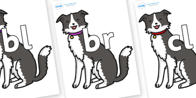Initial Letter Blends on Dog - Initial Letters, initial letter, letter blend, letter blends, consonant, consonants, digraph, trigraph, literacy, alphabet, letters, foundation stage literacy