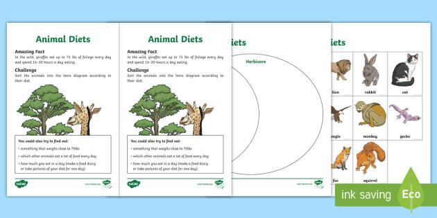 new animal diets worksheet life science adaptations. Black Bedroom Furniture Sets. Home Design Ideas