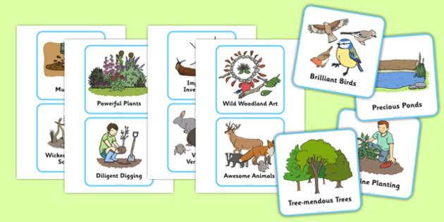 Outdoor Learning Activity Cards - outdoor learning, outdoor, learning, activity, cards