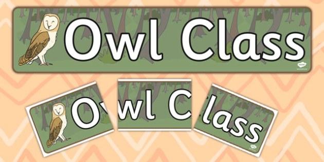 Owl Themed Classroom Display Banner - display banner, display