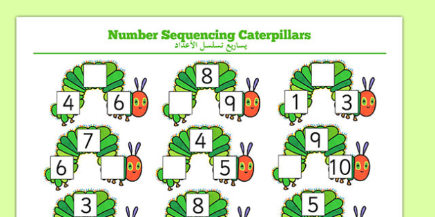 The Very Hungry Caterpillar Number Sequencing Caterpillars Arabic Translation - count, numbers, ordering, sequence, caterpillars, animals, minibeasts, maths, numeracy, early years, EAL, new starter, bilingual