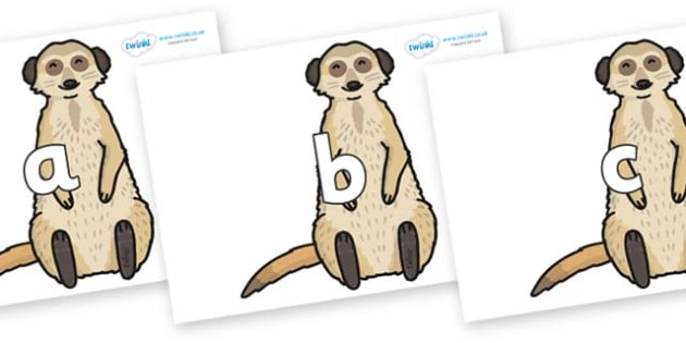 Phase 2 Phonemes on Meerkats - Phonemes, phoneme, Phase 2, Phase two, Foundation, Literacy, Letters and Sounds, DfES, display
