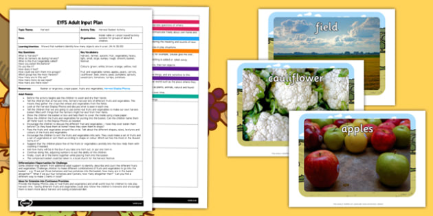 Harvest Basket Activity EYFS Adult Input Plan and Resource Pack - seasons, weather, planning