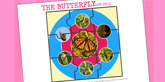 Life Cycle of a Butterfly Jigsaw - life cycles, cutouts, games