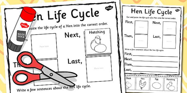 Hen Life Cycle Sentence Writing Activity Sheet - write, activity, worksheet