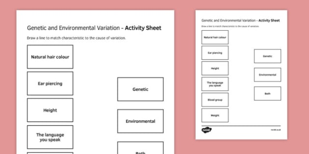 Genetic and Environmental Variation Match and Draw