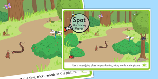 Phase 4 Tricky Words Magnifying Glass Activity Minibeasts Scene Poster - phase 4, tricky words, magnifying glass, activity, minibeast, scene, poster, display