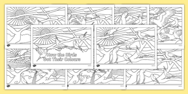 Aboriginal Dreamtime How the Birds Got Their Colours Colouring Pages-Australia