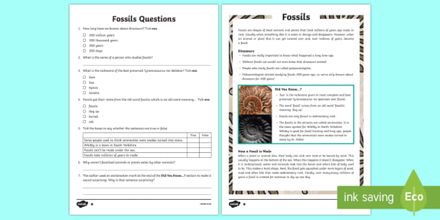 Fossils Reading Comprehension Year 3 - Primary Resource